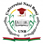 E-Learning Université Nazi BONI - Burkina Faso