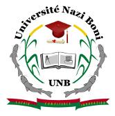 Logo de L'Université Nazi BONI